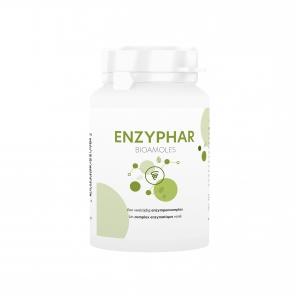 enzyphar.001.b1.v003