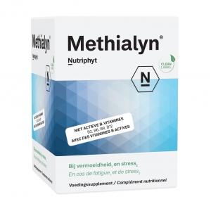 methi120.001.b1.v002