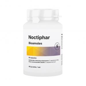 noctiphr.001.b1.v002